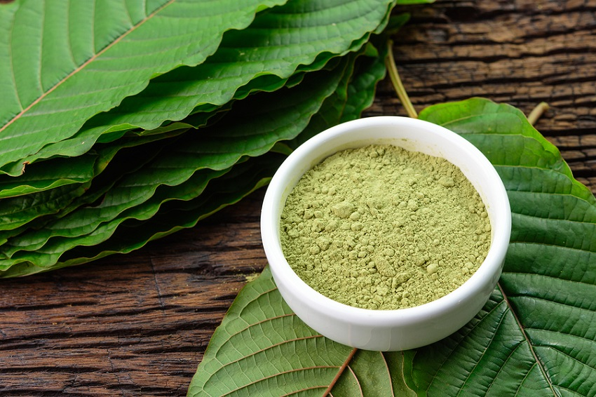 Brief History of Kratom