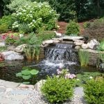 How To Choose a Landscaper That Makes the Cut