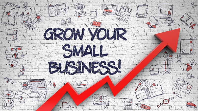 SMALL BUSINESSES MANAGEMENT: STRATEGIES FOR BUSINESS MANAGEMENT