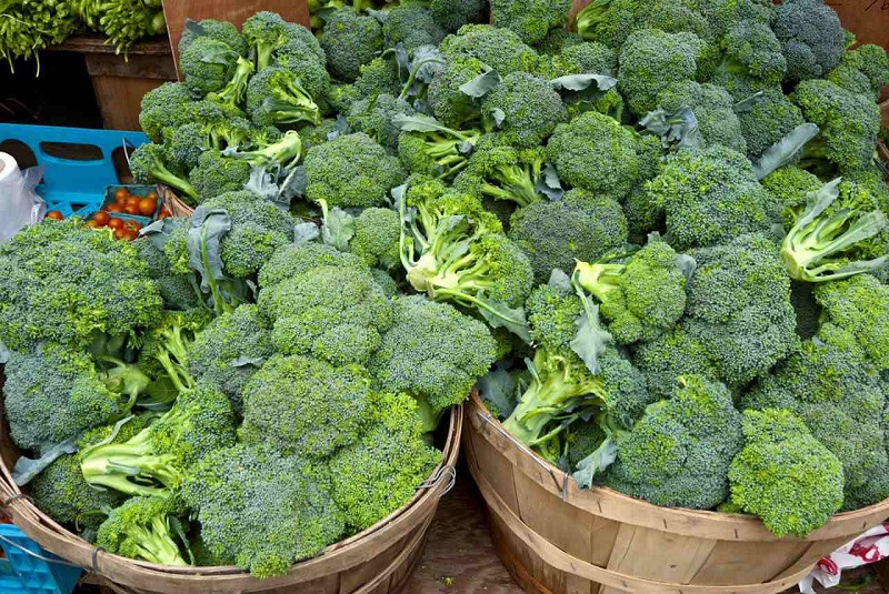 How to store broccoli properly