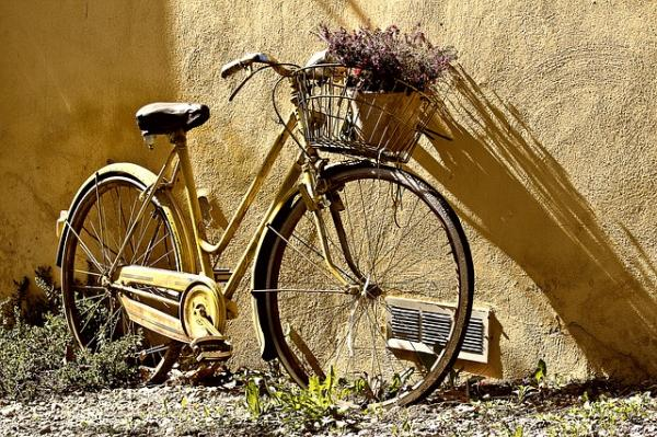 Move your bicycle around your city