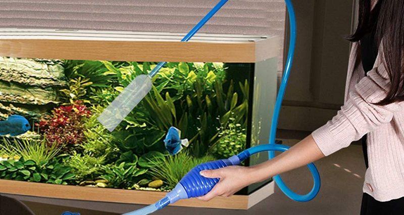 aquarium cleaning
