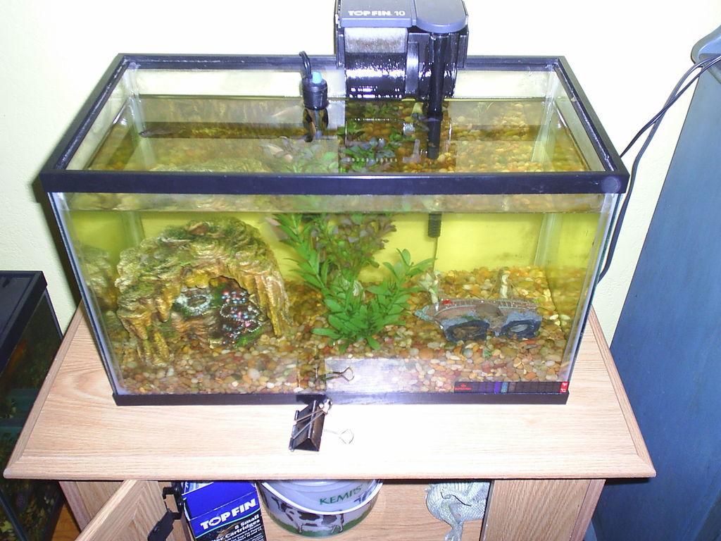 aquarium tank filter
