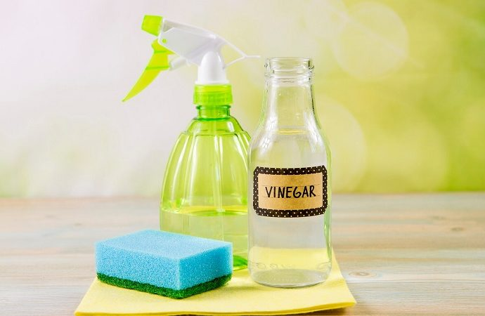 does vinegar disinfect